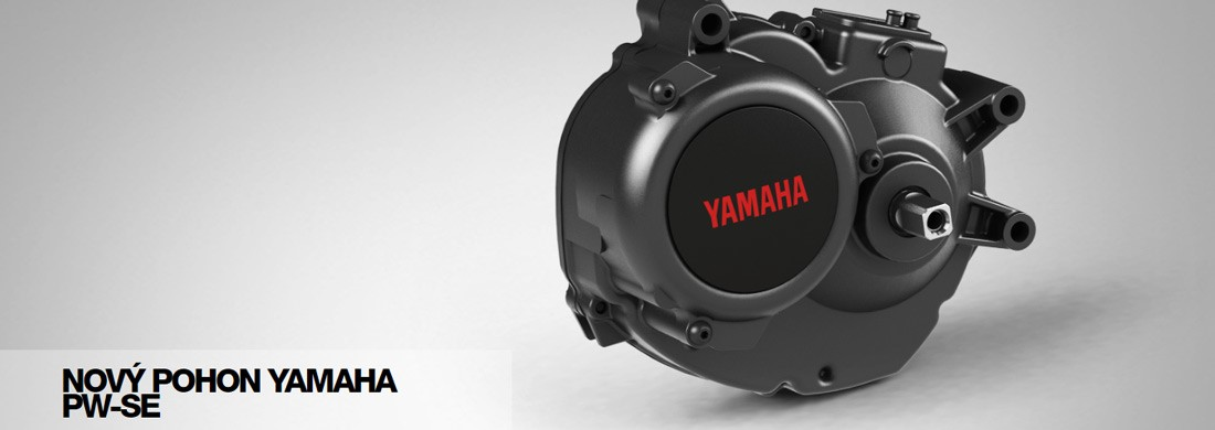 Motor Yamaha PW-SE